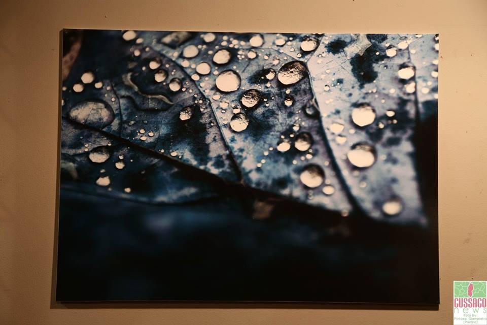 Mostra acqua 2015