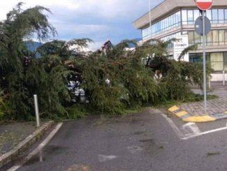 Danni vento tempesta luglio 2020